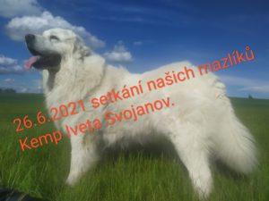 Svojanov2021